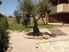 Mantenimiento de Jardines en Madrid, Majadahonda, Las Matas