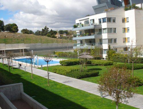 Jardineria y jardineros | Madrid | Pozuelo | Boadilla  Las Rozas