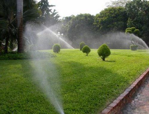 Instalar sistema de riego automatico en su jardin