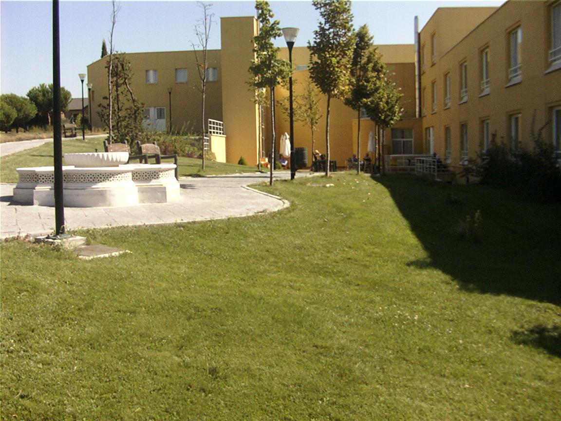 Mantenimiento jardines sanyres centros para mayores las for Jardineria las rozas