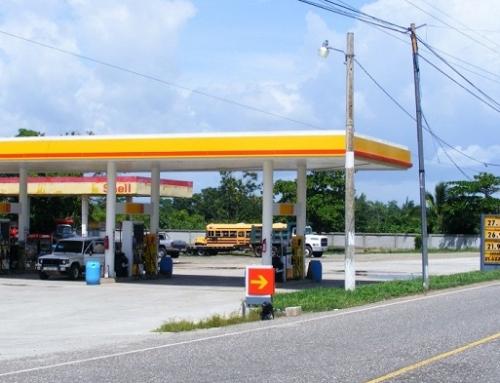 Jardineria Gasolineras Shell