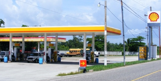 Jardines gasolinera Shell Majadahonda