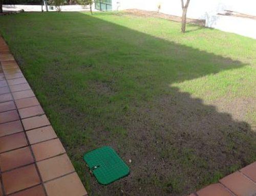 Creación de pradera e instalación de nuevo riego automático en Las Matas, Las Rozas de Madrid.