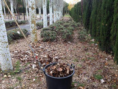 Limpieza hojas en Jardin de Torrelodones Madrid
